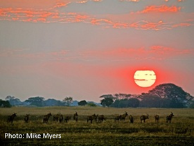 Zambia tours and safaris